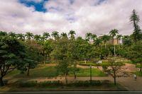 O Verde da Praça